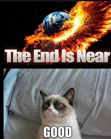 And Grumpy Cat